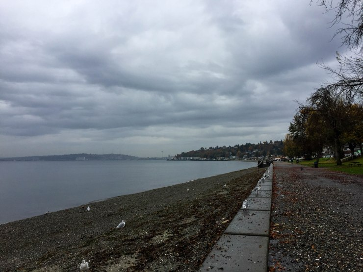 Our first stop was Alki Beach in West Seattle. At Alki, you get the perfect view of the skyline of downtown Seattle, marked by the Space Needle. The beach itself was entirely comprised of different types of rocks, different from a traditionally sandy beach. Locals head out into the chilly Pacific Northwest waters to go diving for crabs.
